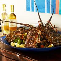 Anguilla lobster- CuisinArt