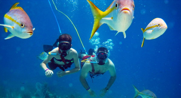 Virgin Islands SNUBA Excursions operated for more than 20 years, putting thousands underwater. Photo: VI SNUBA Excursions