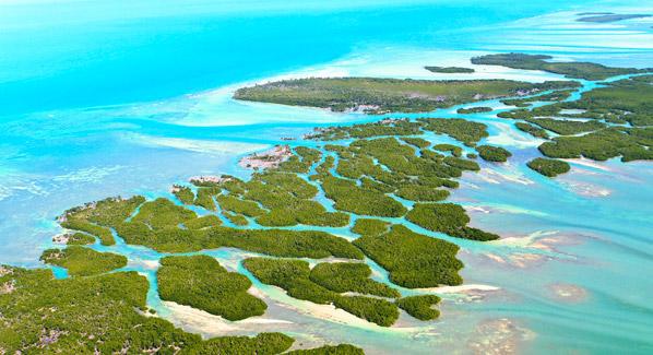 Florida Keys Aerial, Florida Keys Seaplane Adventures