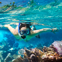 Into The Blue Best Snorkel Sites In Mexico Tropixtraveler