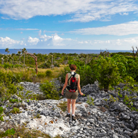 Cayman Brac Hiking