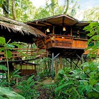 Costa Rica Punta Uva Tree House