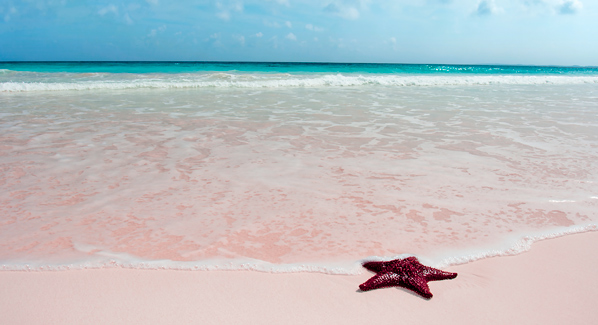 Pretty in pink best pink beaches in the caribbean for Pink sand beaches bahamas