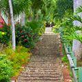 St Thomas Charlotte Amalie