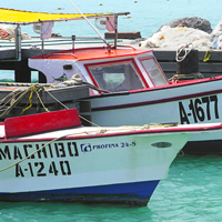 Aruba Fishing Boats