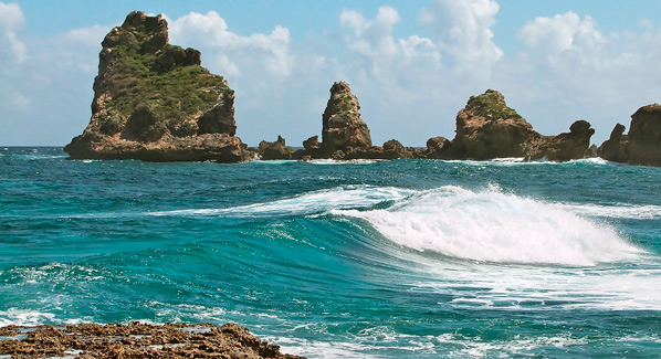 Guadeloupe Pointe des Chateaux