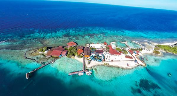 Aruba De Palm Island