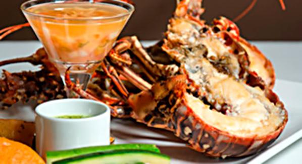 St martin Ocean 82 Lobster Langouste