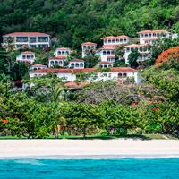 Grenada Mount Cinnamon