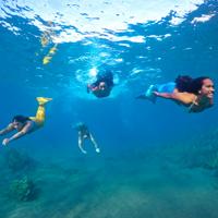 Maui Mermaid Adventures