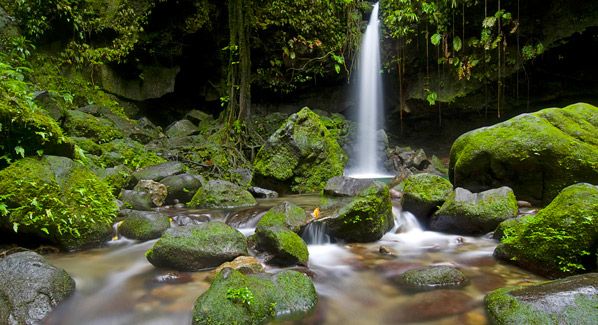 Emerald Pool Waterfall Dominica