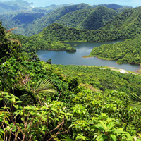 Dominica Freshwater Lake MorneTrois