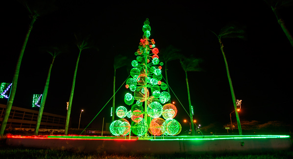 Aruba Christmas Tree