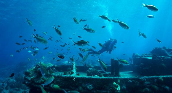 Underwater Wreck Curacao