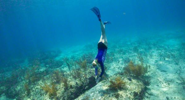 Bimini Snorkel