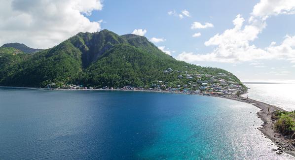 Dominica Scotts Head