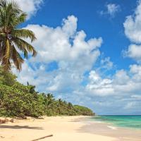 Guadeloupe Marie Galante Beach