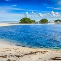 Bahamas Andros Blue Hole