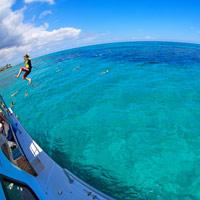 Stuart Cove Snorkeling Bahamas