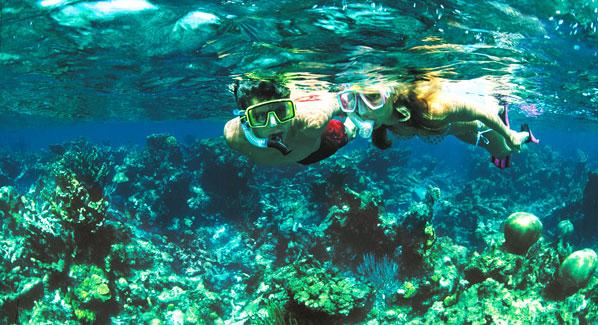 USVI, St. Croix snorkeling