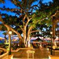 Waikiki Moana Surfrider Beach Bar