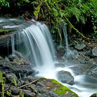 La Amistad Park Waterfall Panama