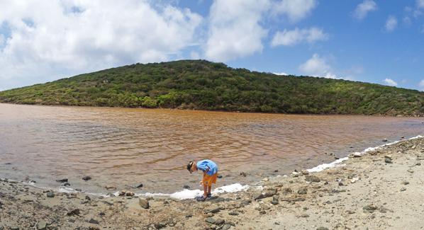 USVI Salt Pond
