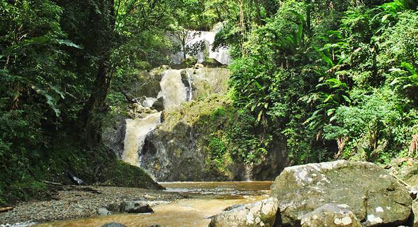 Trinidad & Tobago Waterfall Argyle