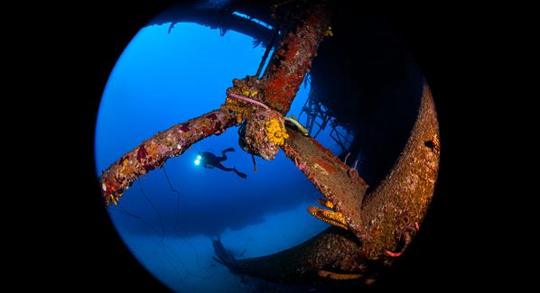 Buddy Dive Resort Diving Bonaire