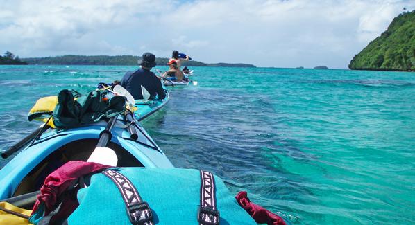 Tonga Kayak With Whales