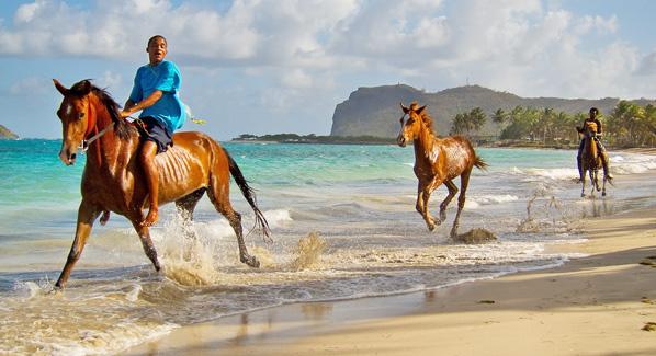 St. Lucia Horseback Riding on Beach