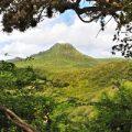 Curacao Christoffel Park