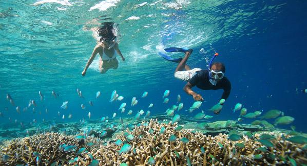 Coral Reefs Anantara