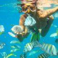 BVI Snorkel