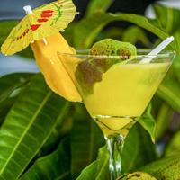 Mango Cocktails St. Lucia